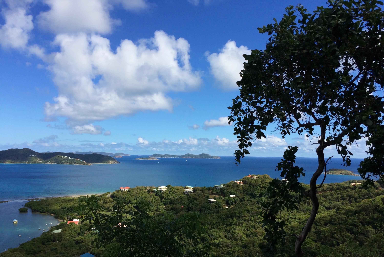 St John, Virgin Islands 00830, 1 Bedroom Bedrooms, ,1 BathroomBathrooms,Residential,For Sale,15-103