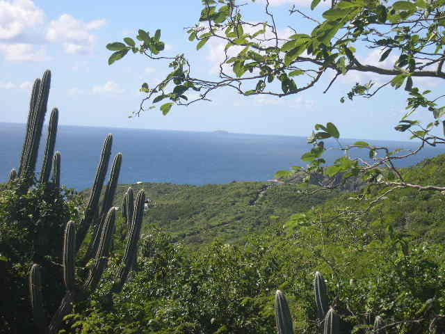 St John, Virgin Islands 00830, ,Land,For Sale,16-372
