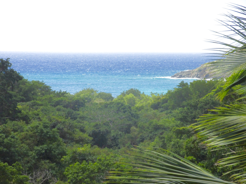 St John, Virgin Islands 00830, ,Land,For Sale,17-112