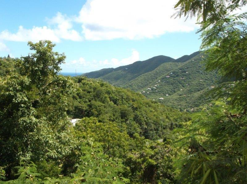 St John, Virgin Islands 00830, ,Land,For Sale,17-298