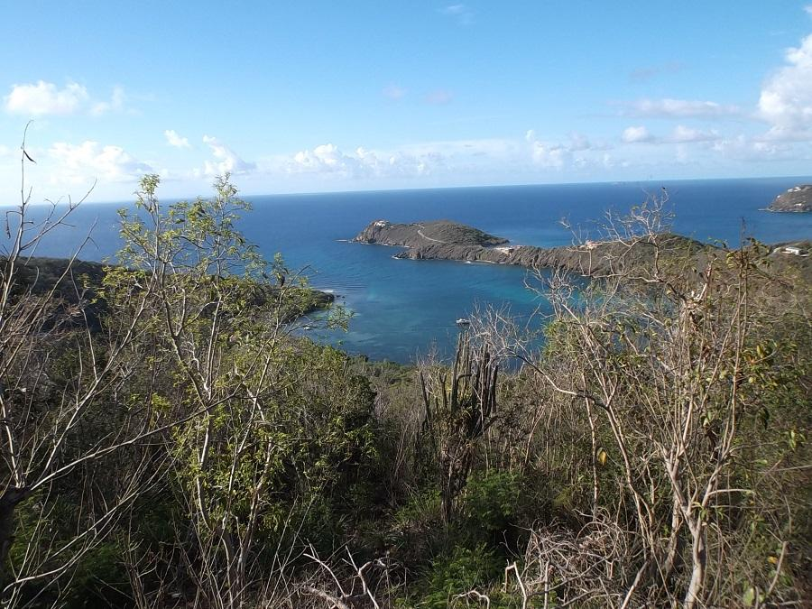 St John, Virgin Islands 00830, ,Land,For Sale,18-103