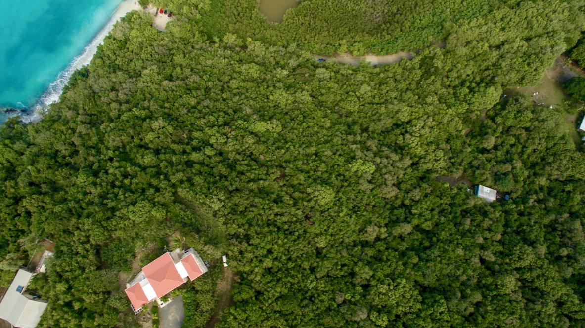 St John, Virgin Islands 00830, ,Land,For Sale,18-114