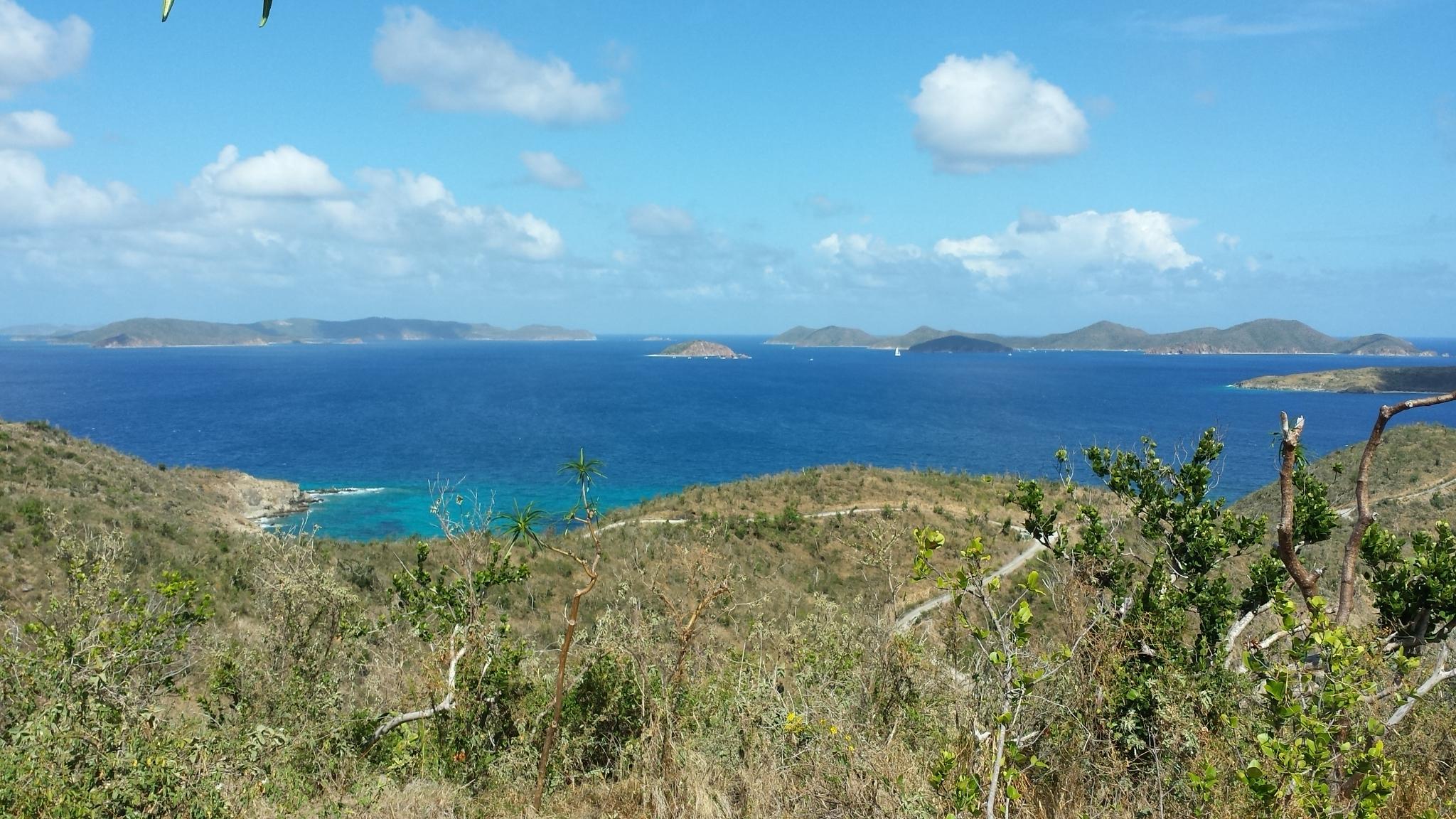 St John, Virgin Islands 00830, ,Land,For Sale,18-136