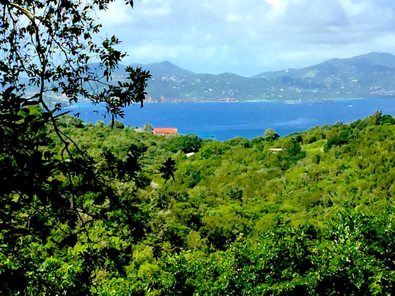 St John, Virgin Islands 00830, ,Land,For Sale,18-264
