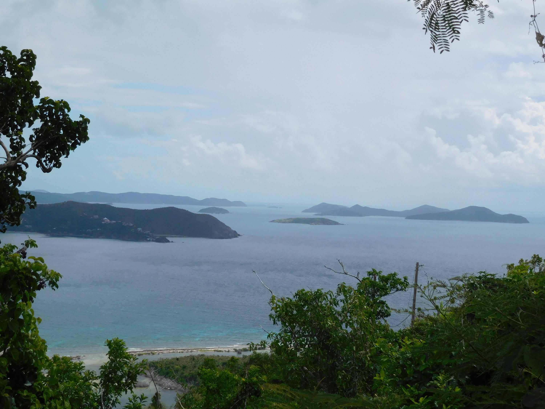 St John, Virgin Islands 00830, ,Land,For Sale,18-268