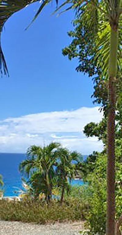 St John, Virgin Islands 00830, ,Land,For Sale,15-58