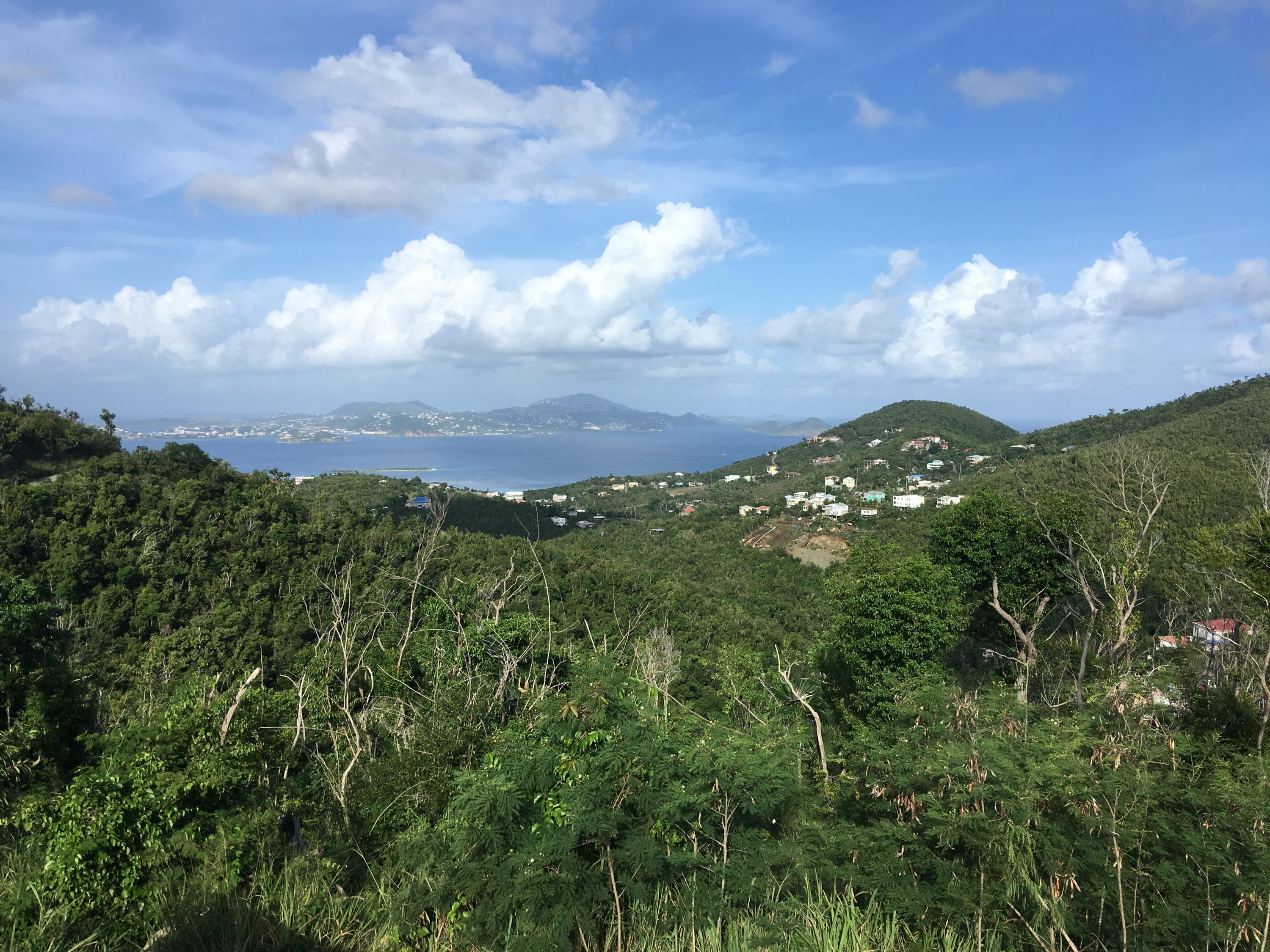 St John, Virgin Islands 00830, ,Land,For Sale,18-287