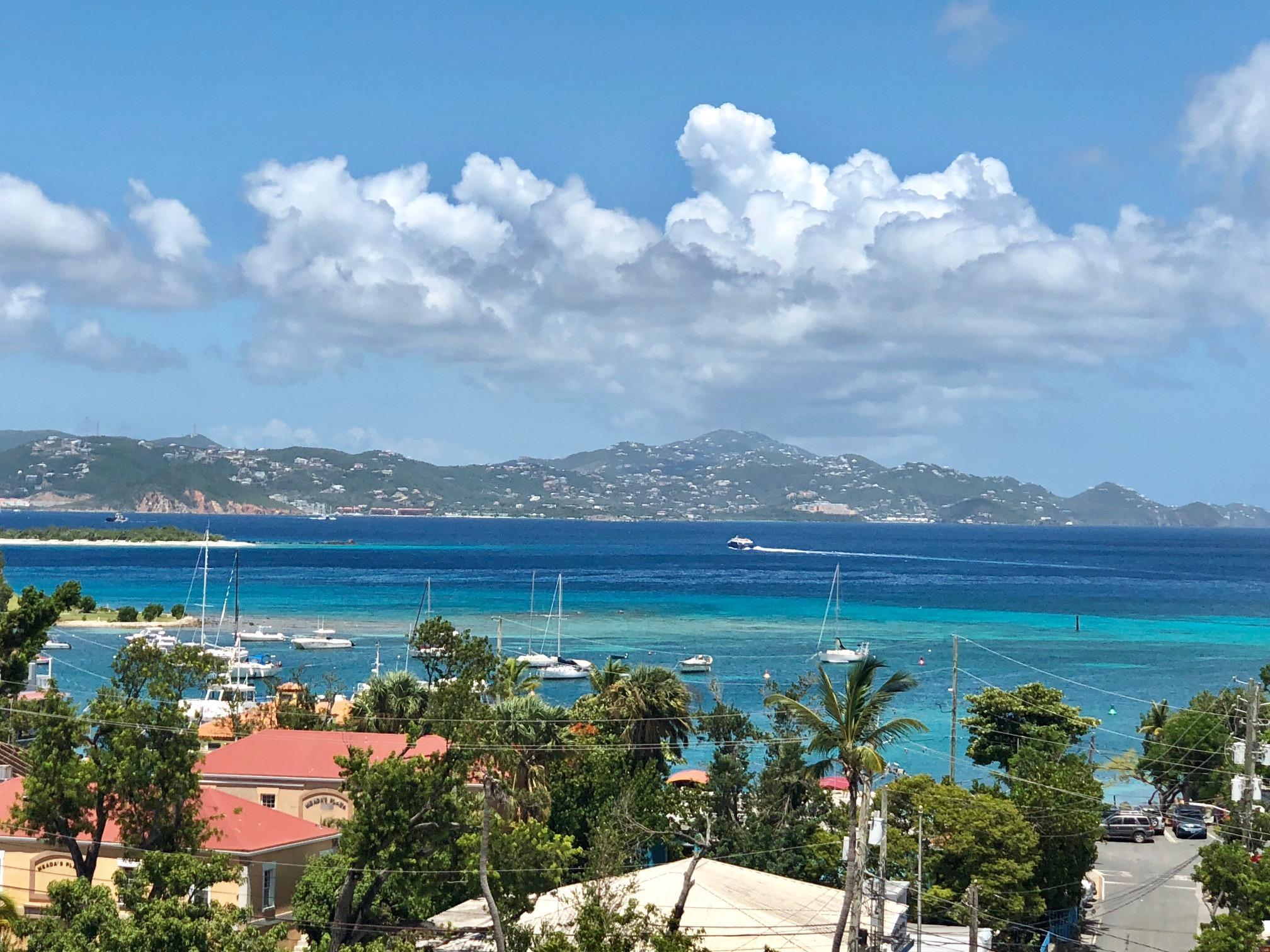St John, Virgin Islands 00830, 1 Bedroom Bedrooms, ,1 BathroomBathrooms,Condo,For Sale,18-294