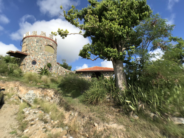 St John, Virgin Islands 00830, 2 Bedrooms Bedrooms, ,1 BathroomBathrooms,Residential,For Sale,18-341