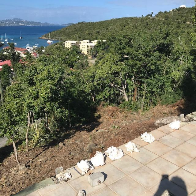 St John, Virgin Islands 00830, ,Land,For Sale,19-9