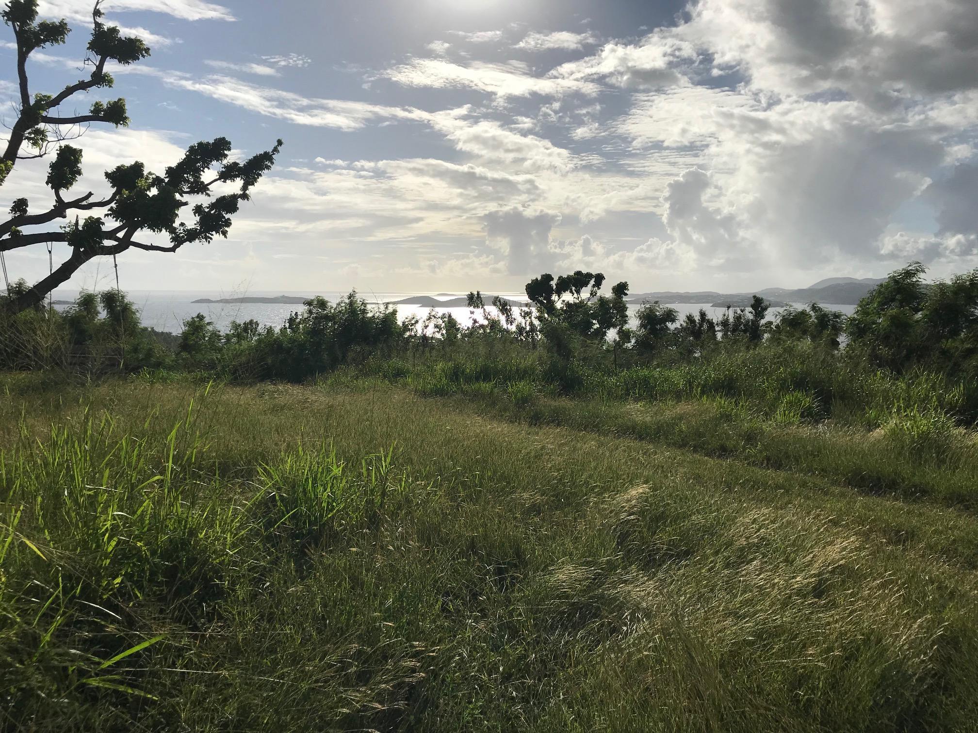 St John, Virgin Islands 00830, ,Land,For Sale,19-41