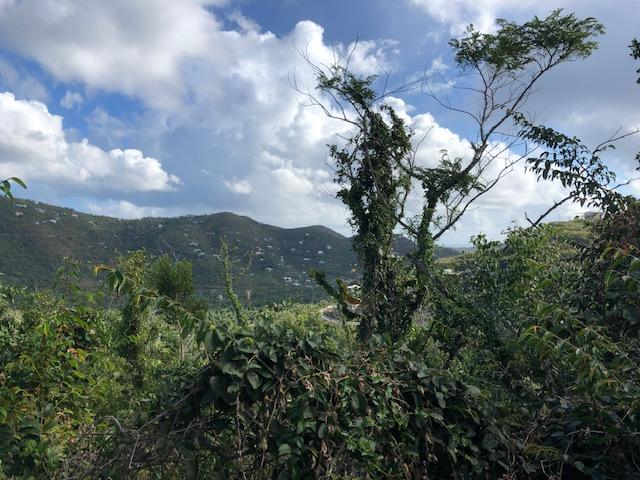 St John, Virgin Islands 00830, ,Land,For Sale,19-75