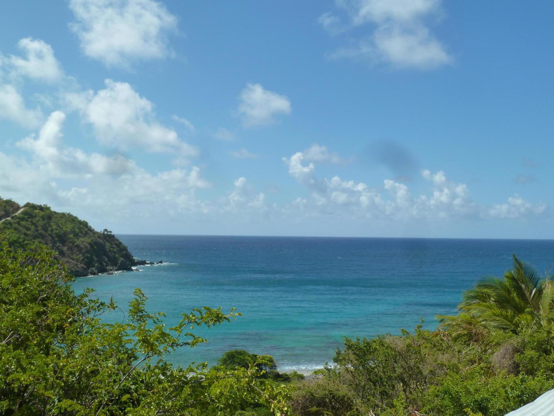 St John, Virgin Islands 00830, ,Land,For Sale,19-137