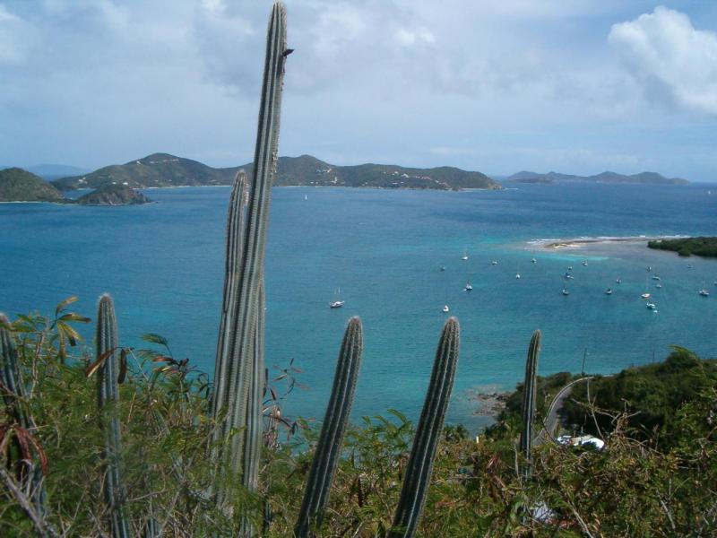 St John, Virgin Islands 00830, ,Land,For Sale,19-177