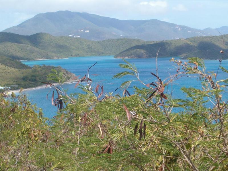 St John, Virgin Islands 00830, ,Land,For Sale,19-177