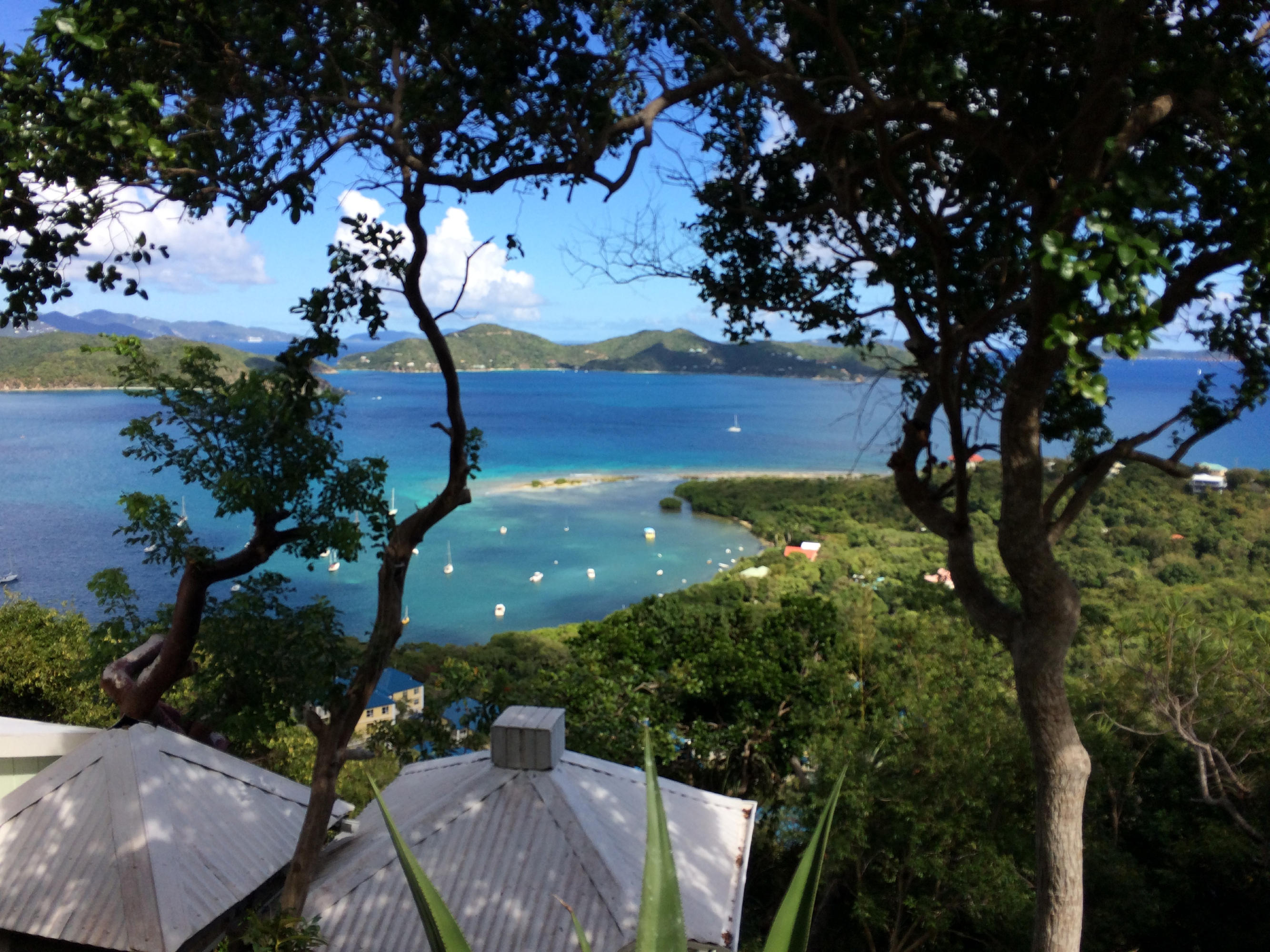St John, Virgin Islands 00830, ,Land,For Sale,19-186