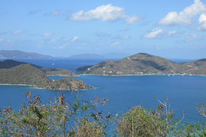 St John, Virgin Islands 00830, ,Land,For Sale,19-194
