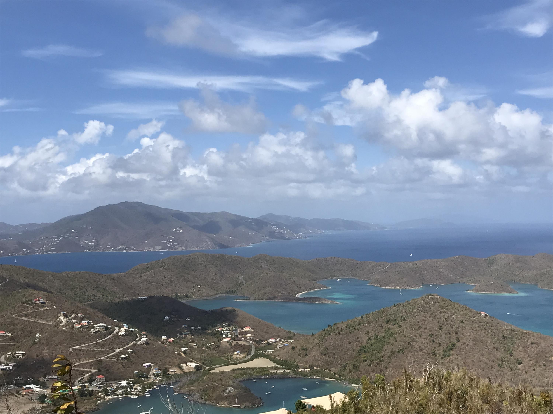 St John, Virgin Islands 00830, ,Land,For Sale,19-109