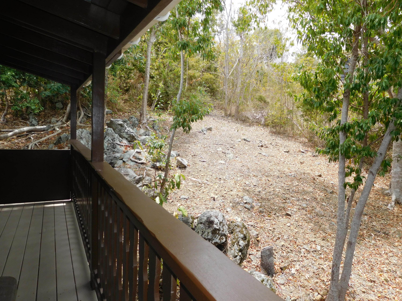 St John, Virgin Islands 00830, 1 Bedroom Bedrooms, ,1 BathroomBathrooms,Residential,For Sale,19-199