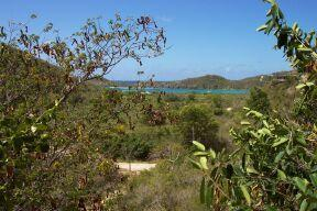St John, Virgin Islands 00830, ,Land,For Sale,19-200