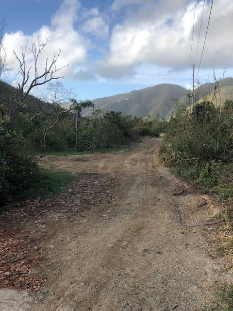 St John, Virgin Islands 00830, ,Land,For Sale,19-201