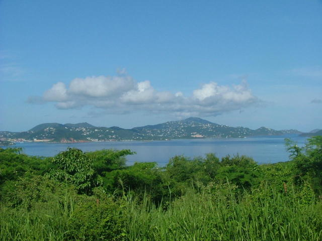 St John, Virgin Islands 00830, 2 Bedrooms Bedrooms, ,2 BathroomsBathrooms,Residential,For Sale,19-42
