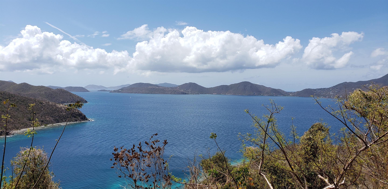 St John, Virgin Islands 00830, ,Land,For Sale,19-223