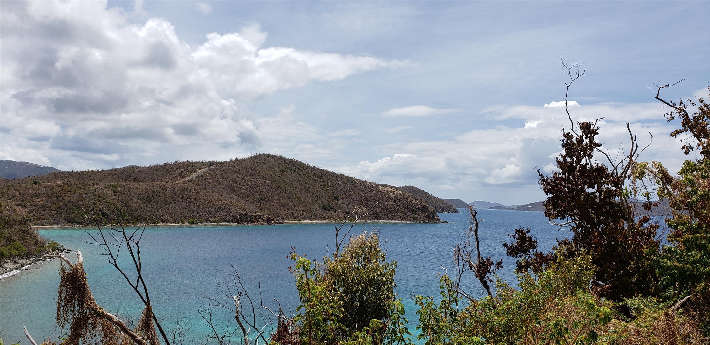 St John, Virgin Islands 00830, ,Land,For Sale,19-222