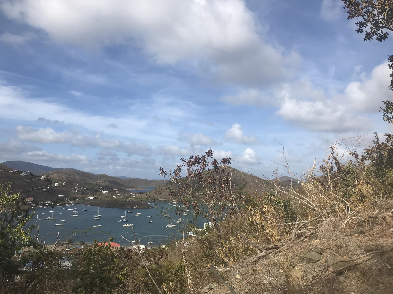 St John, Virgin Islands 00830, ,Land,For Sale,19-235