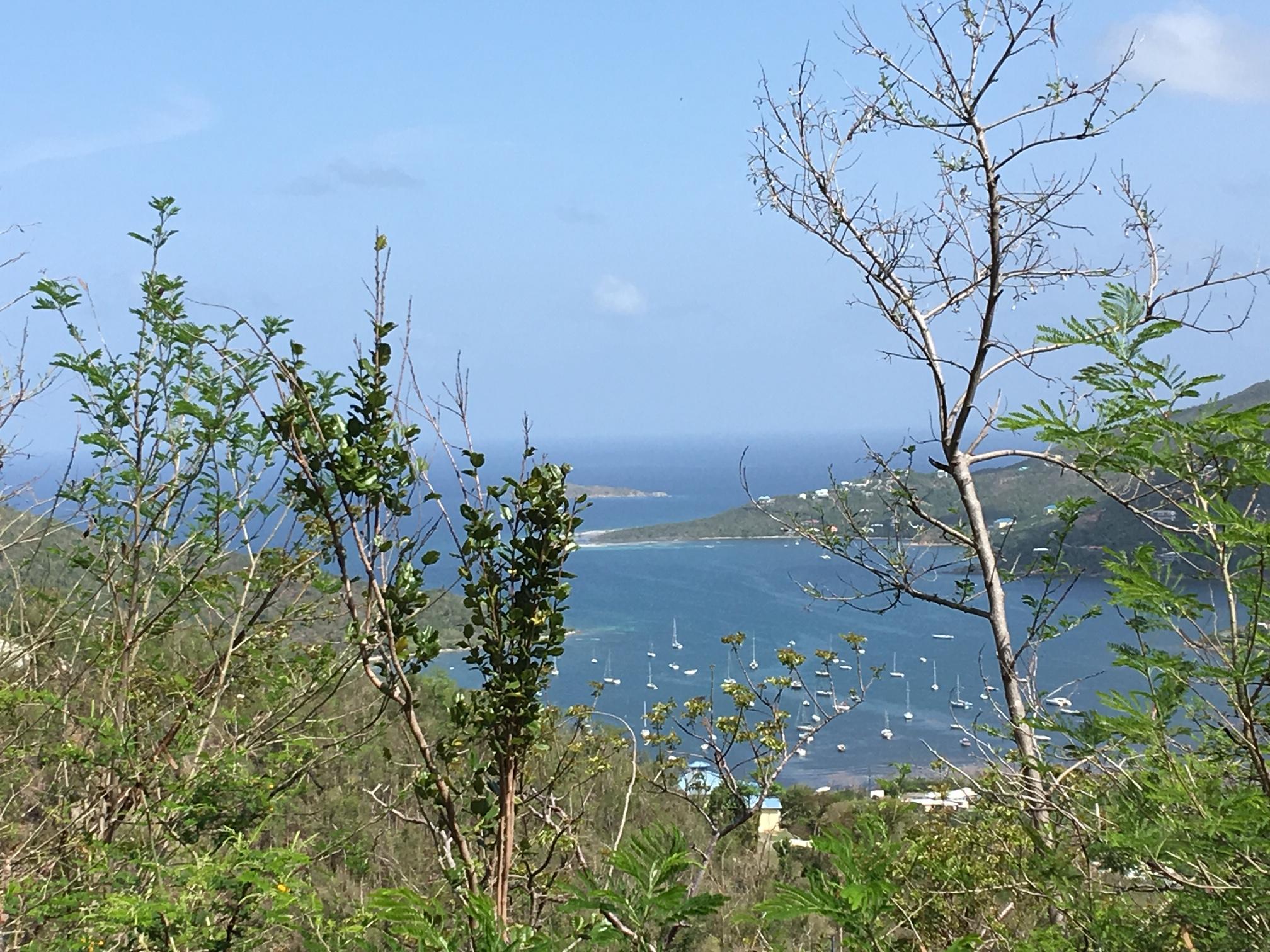 St John, Virgin Islands 00830, ,Land,For Sale,19-239