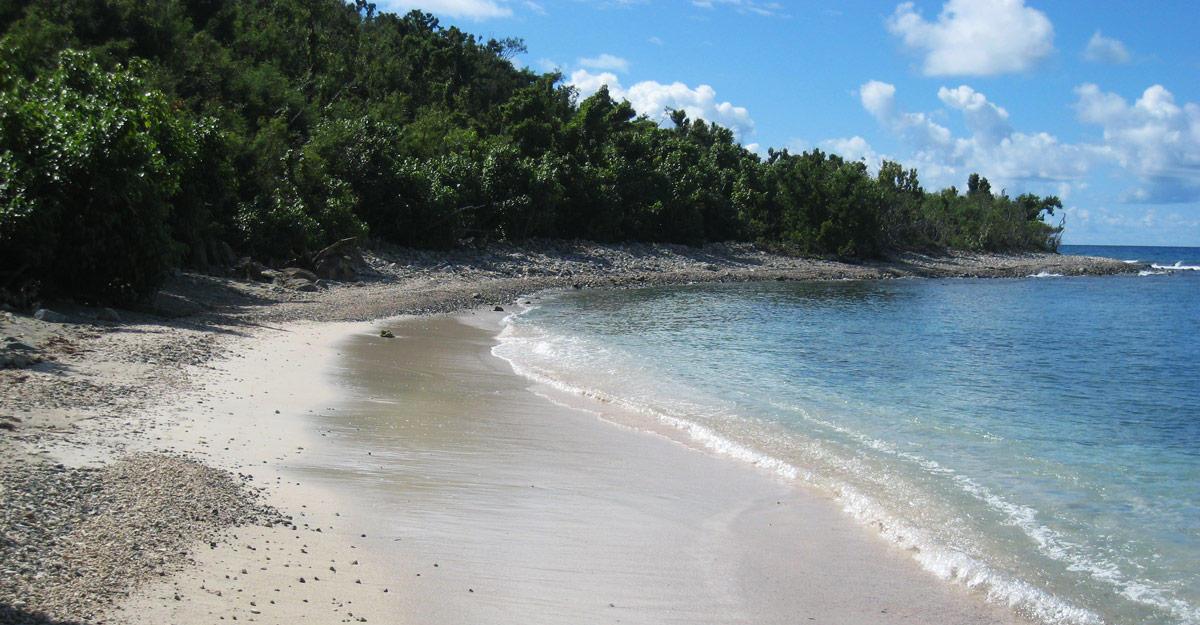 St John, Virgin Islands 00830, ,Land,For Sale,19-172