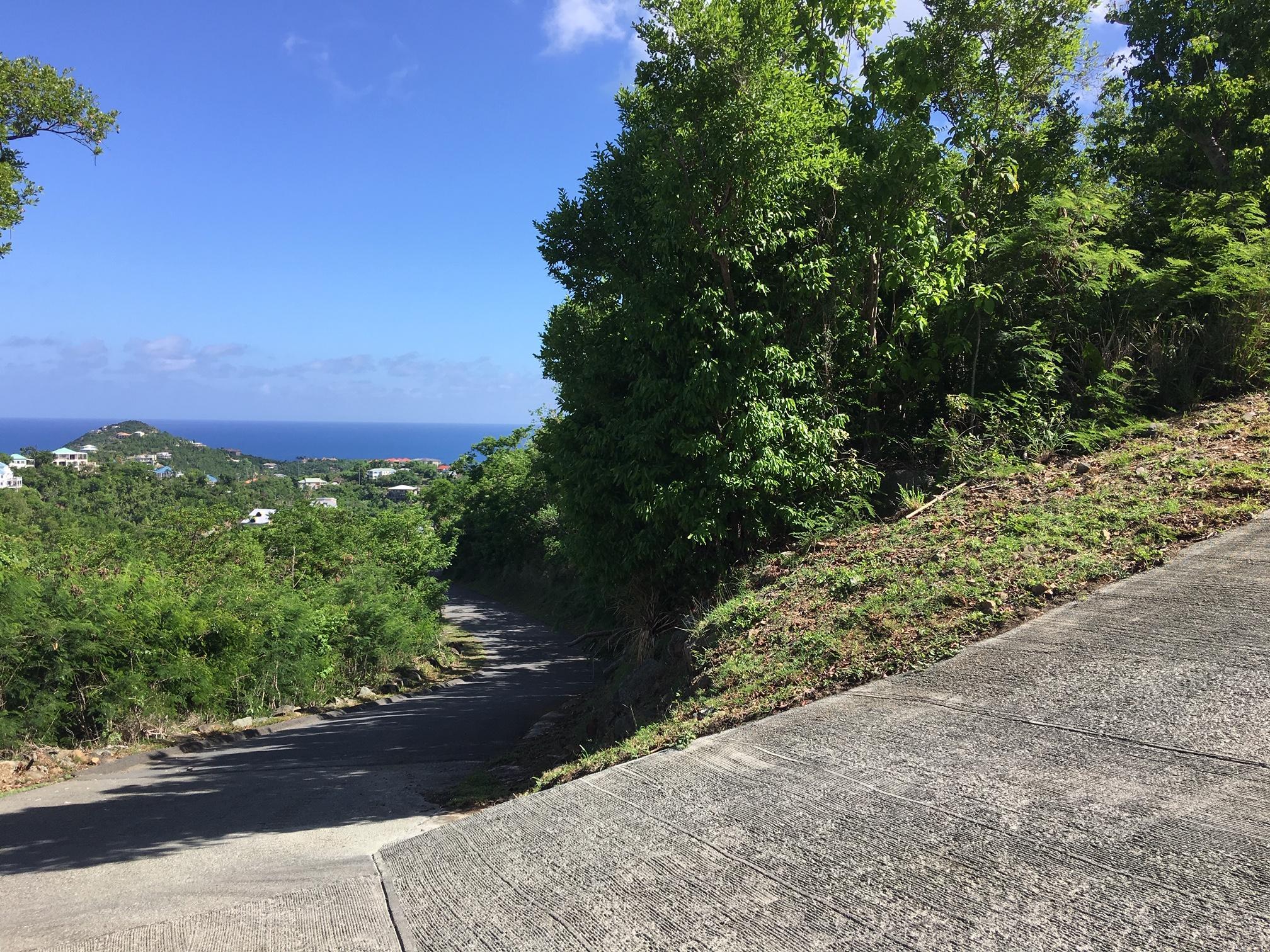 St John, Virgin Islands 00830, ,Land,For Sale,19-249