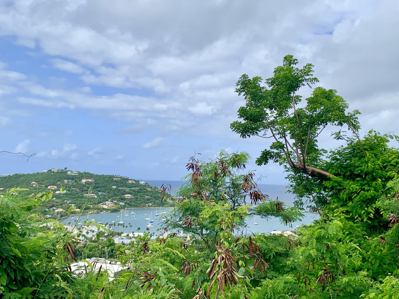 St John, Virgin Islands 00830, ,Land,For Sale,19-247