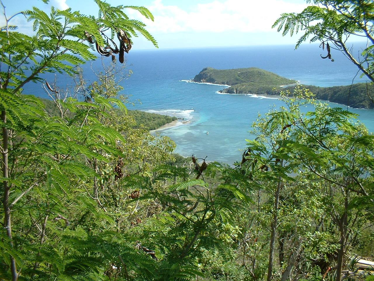 St John, Virgin Islands 00830, ,Land,For Sale,19-255