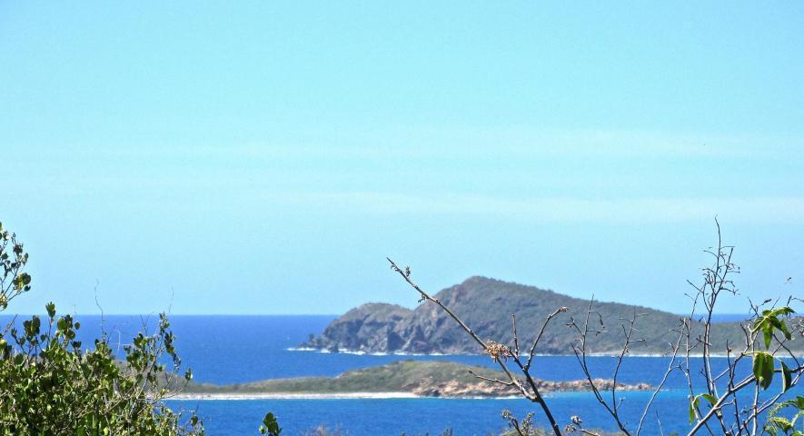 St John, Virgin Islands 00830, ,Land,For Sale,19-270