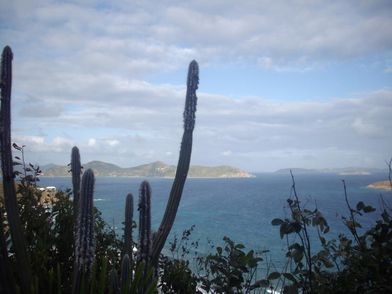 St John, Virgin Islands 00830, ,Land,For Sale,19-330