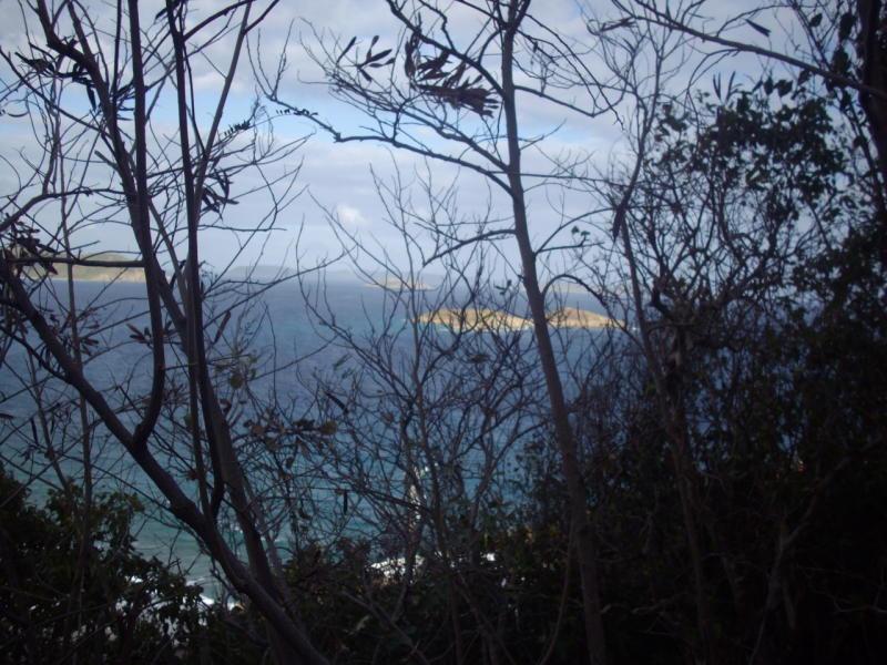 St John, Virgin Islands 00830, ,Land,For Sale,19-330
