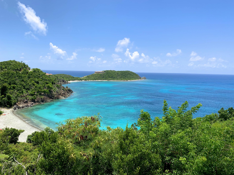 St John, Virgin Islands 00830, 3 Bedrooms Bedrooms, ,3 BathroomsBathrooms,Residential,For Sale,19-335