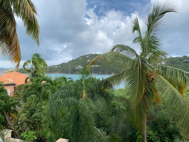 St John, Virgin Islands 00830, 5 Bedrooms Bedrooms, ,3 BathroomsBathrooms,Residential,For Sale,19-336