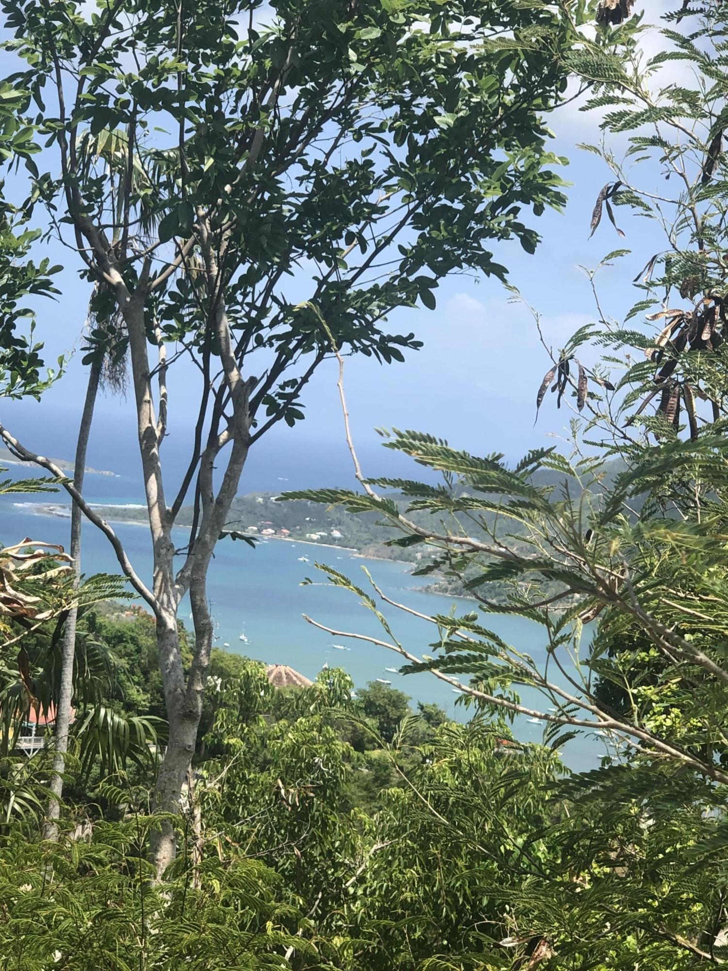 St John, Virgin Islands 00830, ,Land,For Sale,19-337