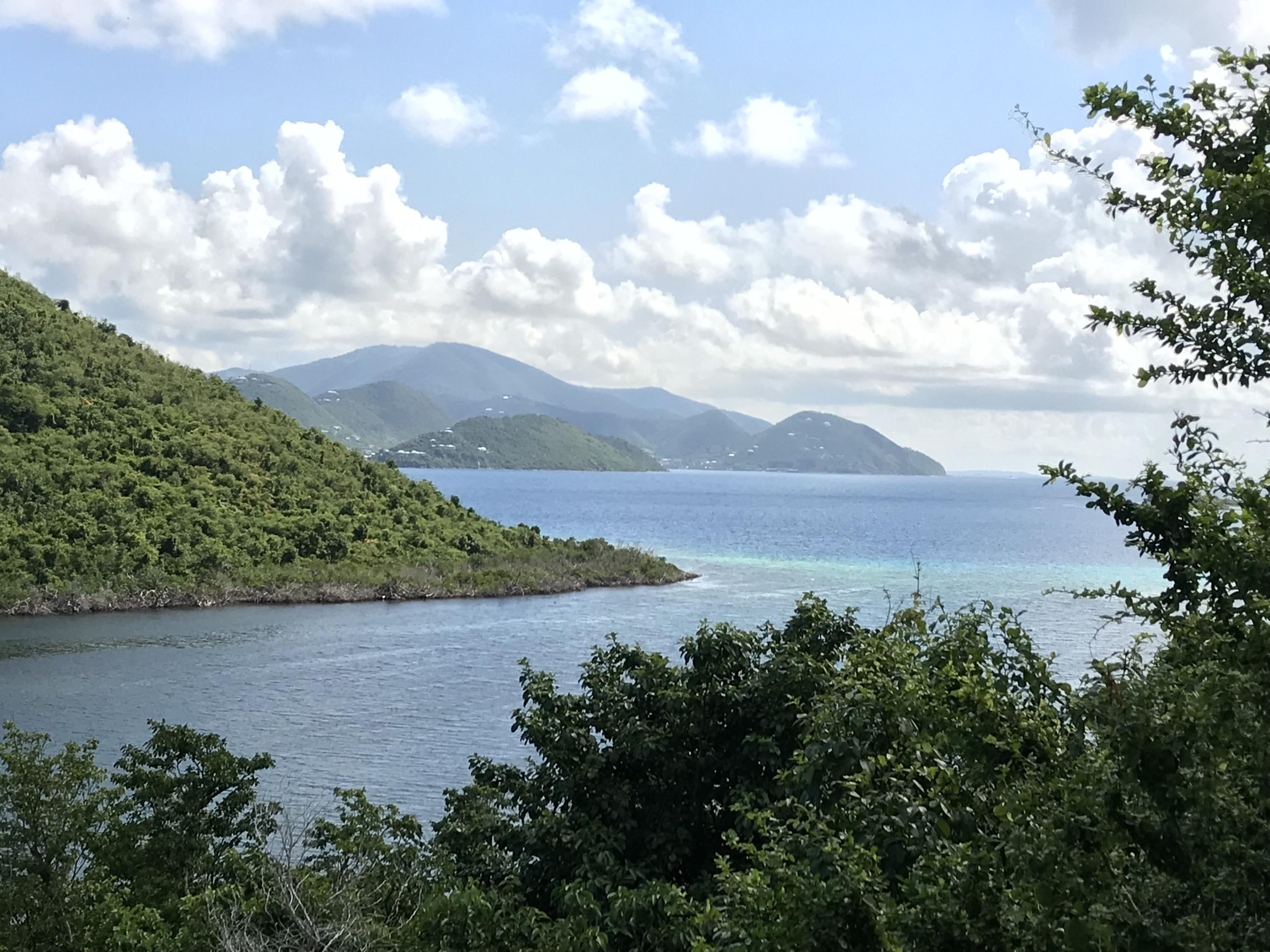 St John, Virgin Islands 00830, ,Land,For Sale,19-338