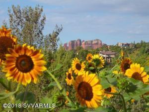Spring, Summer, Fall Garden With Views