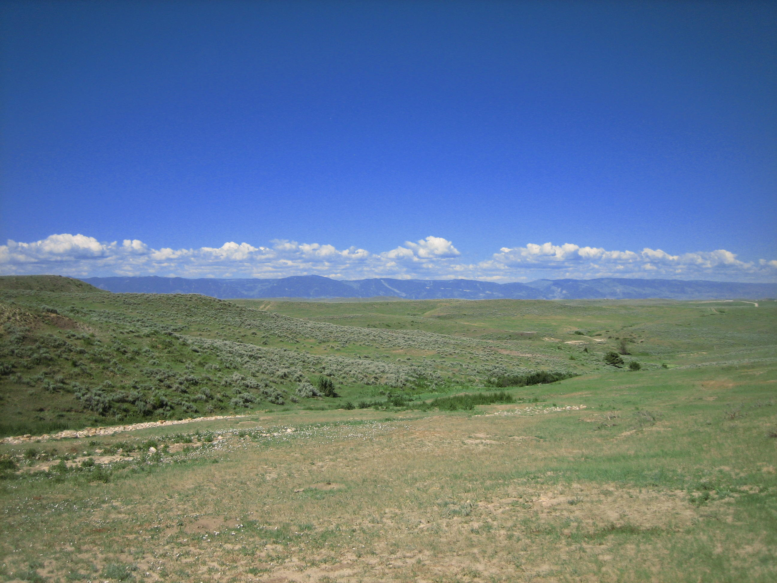 Lot 7 Chinook Drive, Sheridan, Wyoming 82801, ,Ranch-Land,For Sale,Chinook,16-741