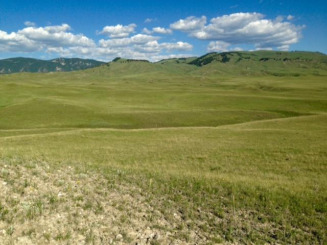 Lot 8 TBD, Buffalo, Wyoming 82834, ,Building Site,For Sale,TBD,17-674