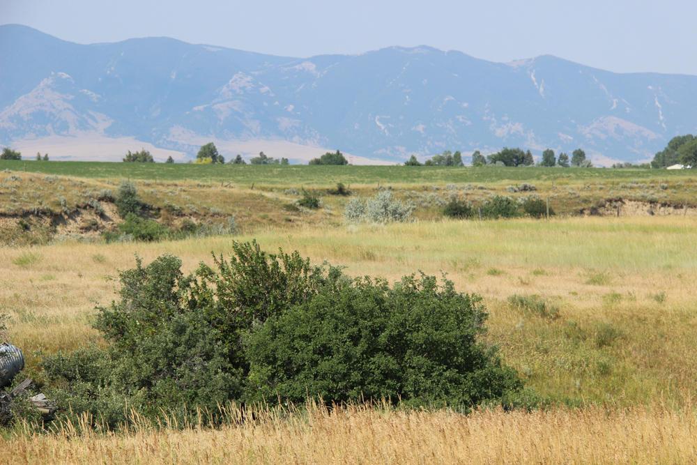 Kingfisher Avenue, Sheridan, Wyoming 82801, ,Ranch-Land,For Sale,Kingfisher,17-851