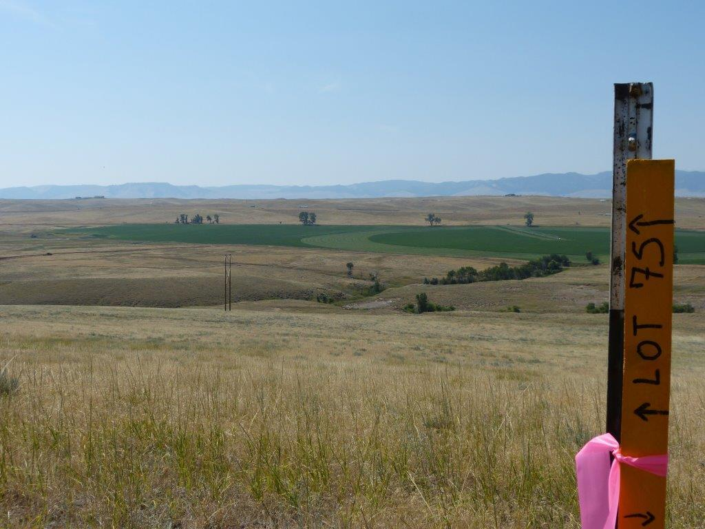 Lot 75 Shoreline Drive, Buffalo, Wyoming 82834, ,Building Site,For Sale,Shoreline,17-941