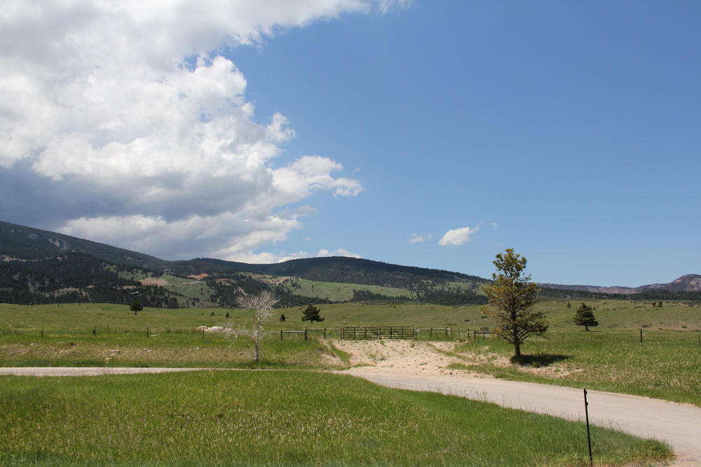 US HWY 14, Dayton, Wyoming 82836, ,Ranch-Land,For Sale,US HWY 14,18-393
