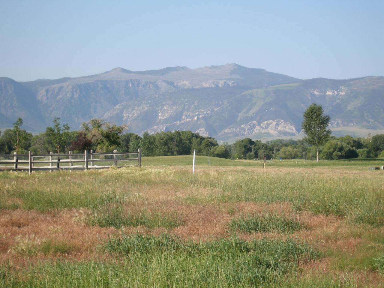 TBD Pinehurst Drive, Sheridan, Wyoming 82801, ,Building Site,For Sale,Pinehurst,18-416