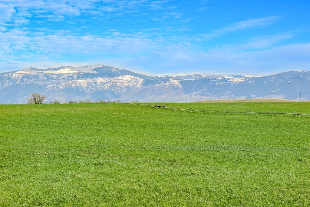 Tract 4 N Upper Road, Sheridan, Wyoming 82801, ,Ranch-Land,For Sale,Upper,18-489