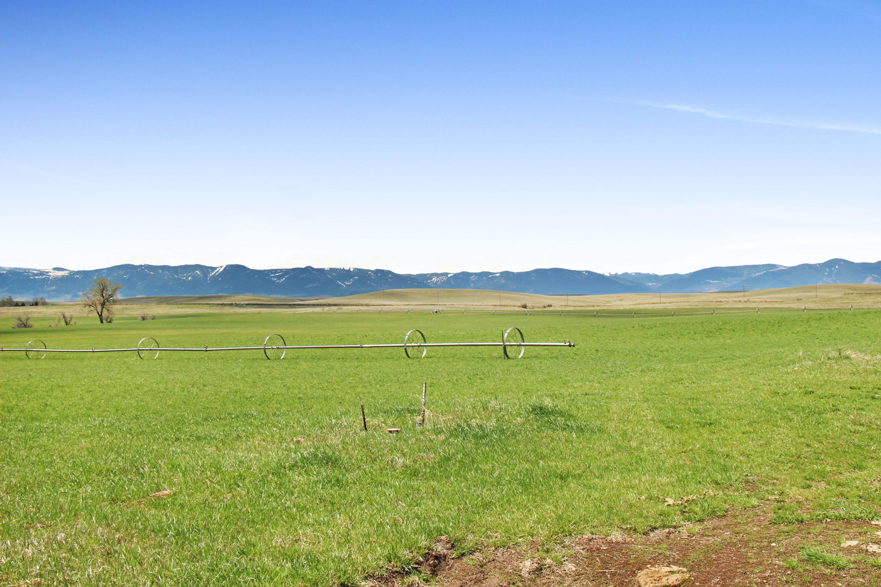 Upper Road, Sheridan, Wyoming 82801, ,Building Site,For Sale,Upper,18-492